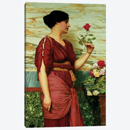 A red, red rose 3-Piece Canvas #BMN464} by John William Godward Canvas Print