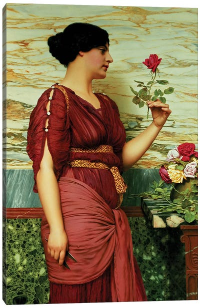 A red, red rose Canvas Art Print