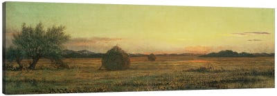 Jersey Meadows  Canvas Art Print