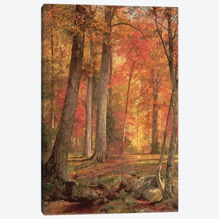 Path in the Forest, 1865  Canvas Print #BMN4656} by William Trost Richards Canvas Artwork