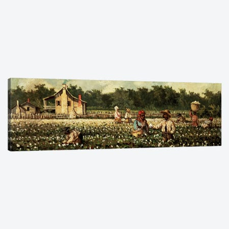 Cotton Field, Mississippi  Canvas Print #BMN4661} by William Aiken Walker Canvas Art