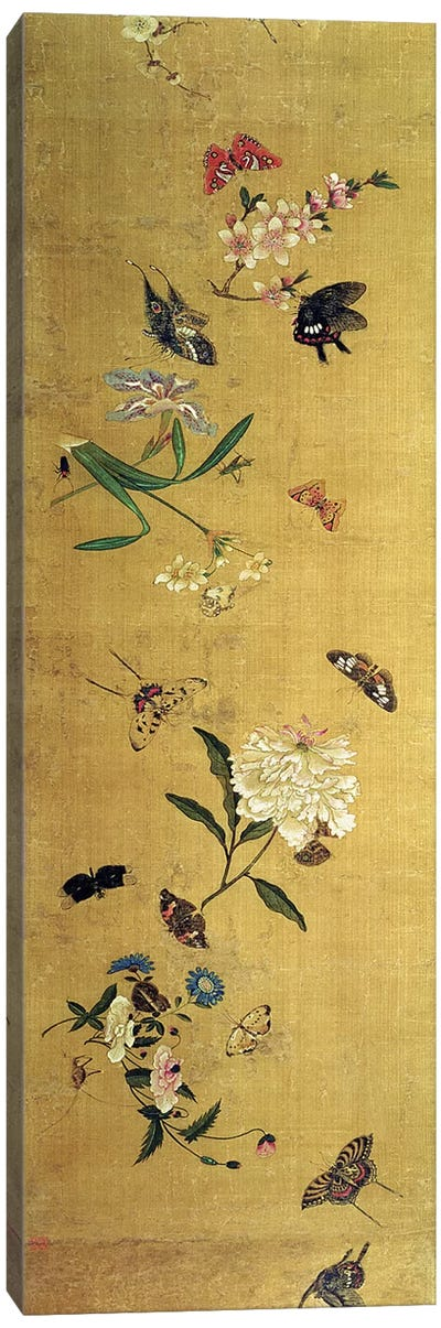One Hundred Butterflies, Flowers and Insects, detail from a handscroll  Canvas Art Print