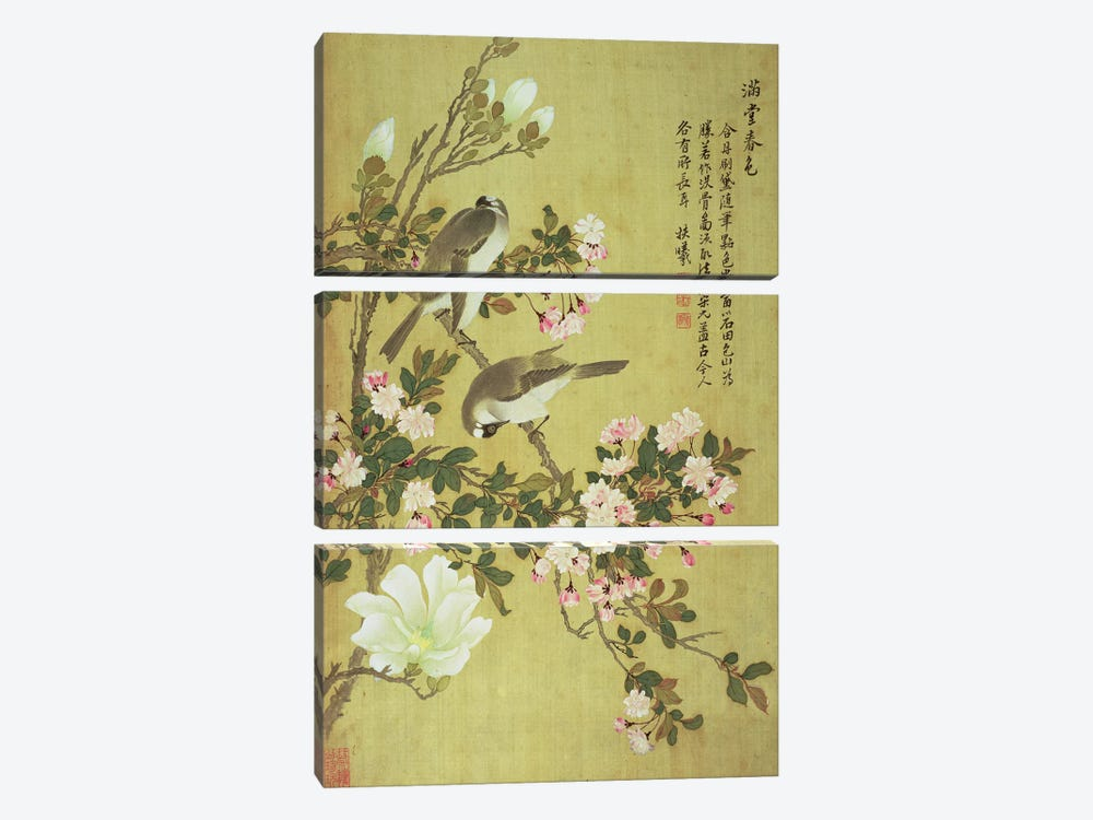 Crabapple, Magnolia and Baitou Birds  by Ma Yuanyu 3-piece Canvas Art