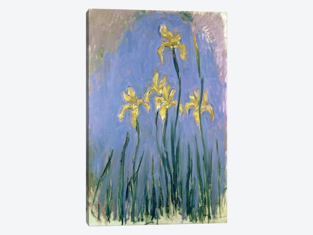 The Yellow Irises, c.1918-25  by Claude Monet 1-piece Canvas Artwork