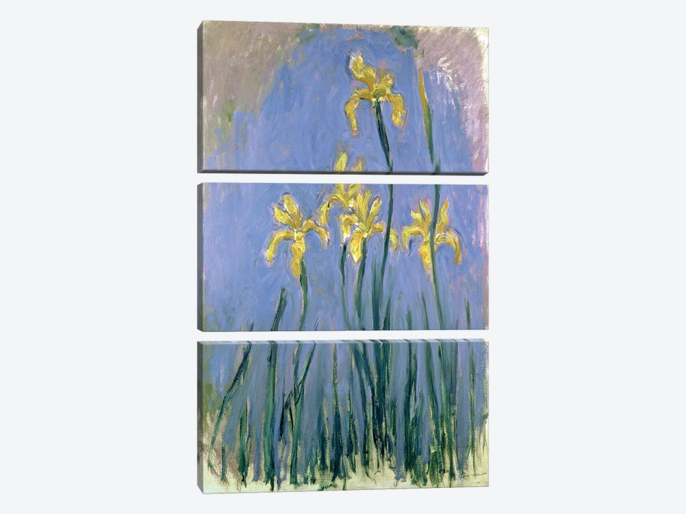 The Yellow Irises, c.1918-25  by Claude Monet 3-piece Canvas Wall Art