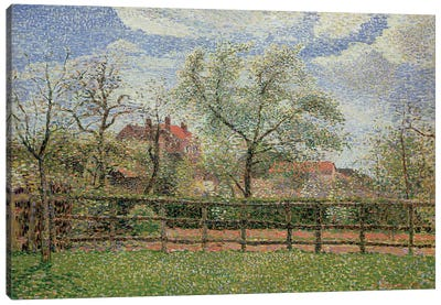 Pear Trees and Flowers at Eragny, Morning, 1886  Canvas Art Print
