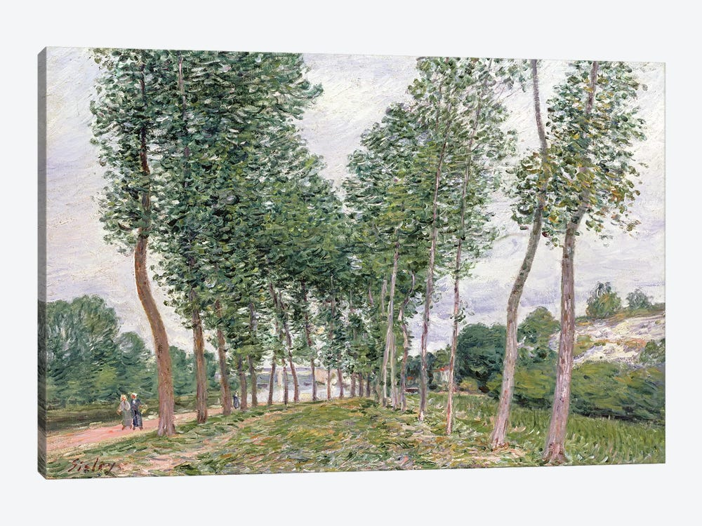 The Avenue of Poplars along the Banks of the Loing, 1892  by Alfred Sisley 1-piece Art Print