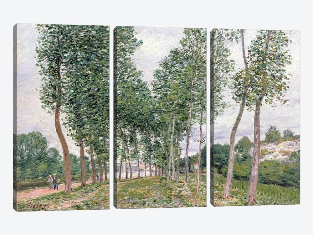The Avenue of Poplars along the Banks of the Loing, 1892  by Alfred Sisley 3-piece Canvas Art Print