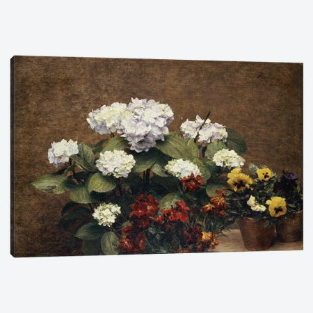 Hortensias and Stocks with Two Pots of Pansies, 1879  Canvas Print #BMN4708} by Ignace Henri Jean Theodore Fantin-Latour Art Print