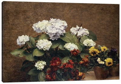 Hortensias and Stocks with Two Pots of Pansies, 1879  Canvas Art Print