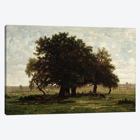 Holm Oaks, Apremont, 1850-52  Canvas Print #BMN470} by Pierre Etienne Theodore Rousseau Art Print