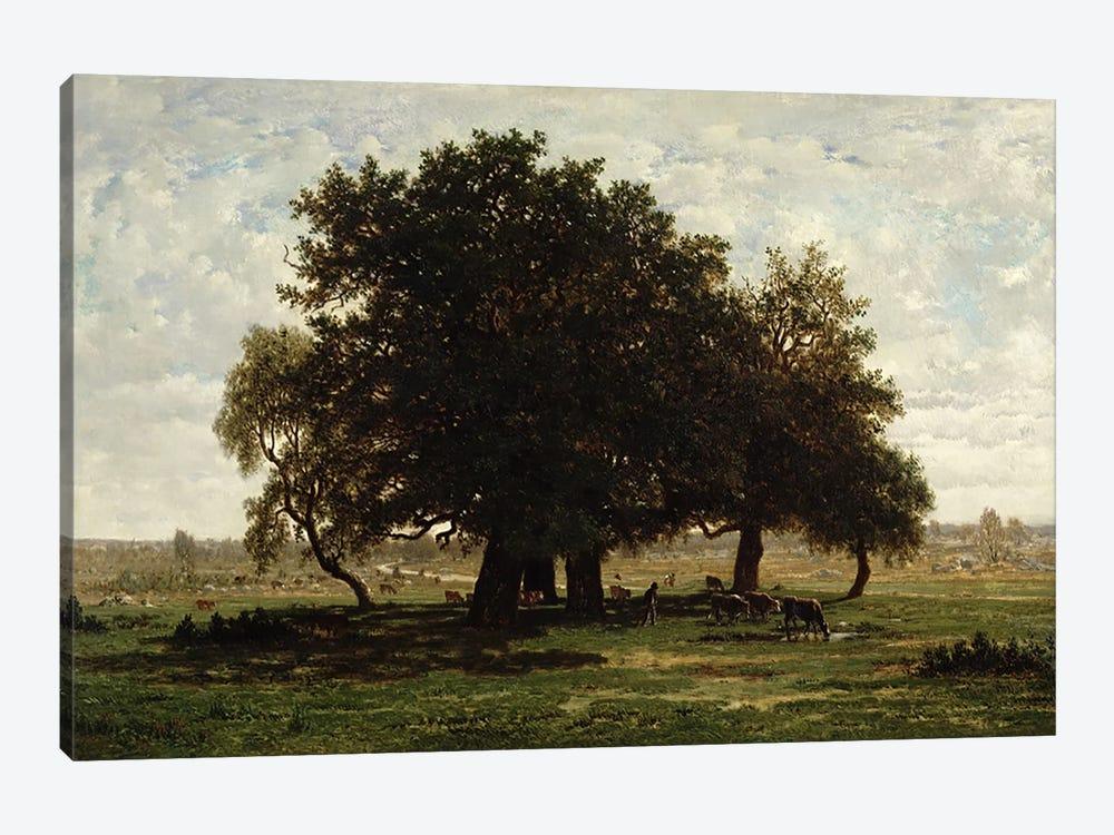 Holm Oaks, Apremont, 1850-52  by Pierre Etienne Theodore Rousseau 1-piece Canvas Print