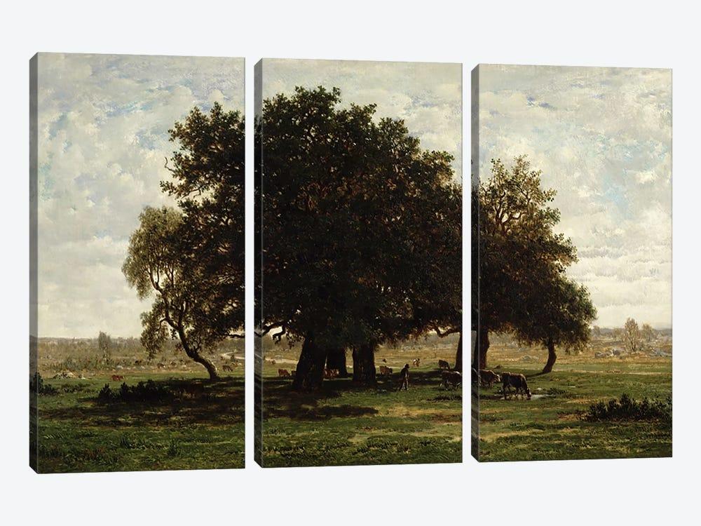 Holm Oaks, Apremont, 1850-52  by Pierre Etienne Theodore Rousseau 3-piece Canvas Print