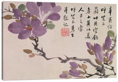 Blossoms, one of twelve leaves inscribed with a poem from an Album of Fruit and Flowers  Canvas Art Print