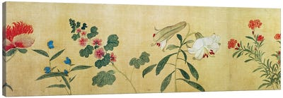 A detail of flowers from a handscroll of a 'Hundred Flowers', 1562  Canvas Art Print