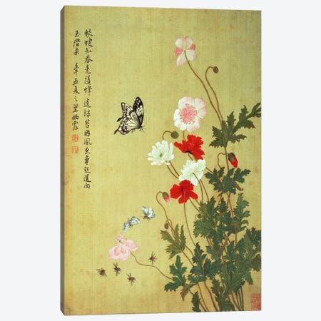 Poppies, Butterflies and Bees  Canvas Print #BMN4727} by Ma Yuanyu Canvas Wall Art