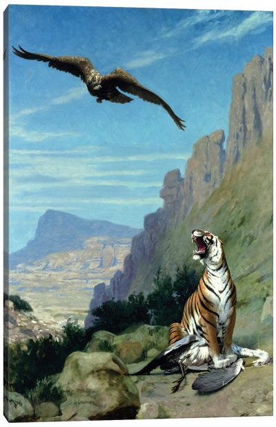 Tiger and Vulture  Canvas Art Print