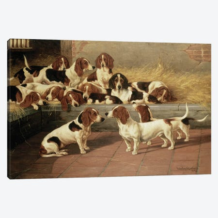 Basset Hounds in a Kennel, 1894  Canvas Print #BMN4739} by Valentine Thomas Garland Canvas Wall Art