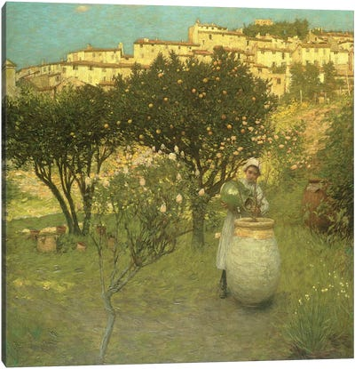 December in Provence  Canvas Art Print
