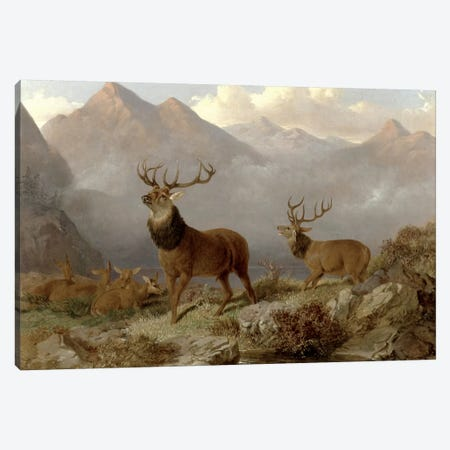 Stags And Hinds In A Highland Landscape, 1864  Canvas Print #BMN4755} by John Frederick Herring Jr Art Print