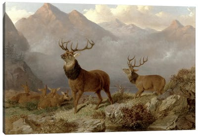 Stags And Hinds In A Highland Landscape, 1864  Canvas Art Print