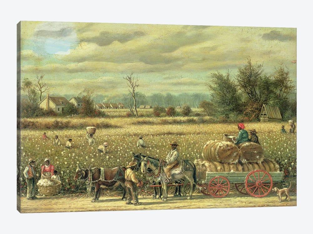 Picking Cotton  by William Aiken Walker 1-piece Canvas Artwork