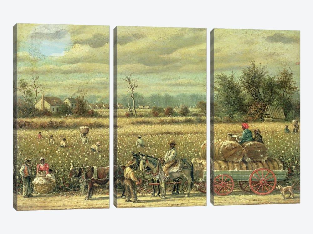 Picking Cotton  by William Aiken Walker 3-piece Canvas Wall Art