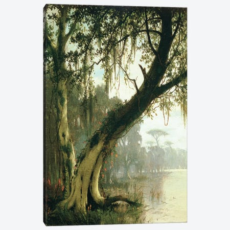 In the Bayou  Canvas Print #BMN4764} by Joseph Rusling Meeker Canvas Art