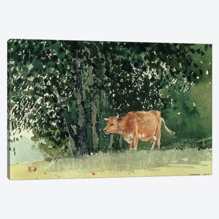 Cow in Pasture, 1878  Canvas Print #BMN4769} by Winslow Homer Canvas Art Print