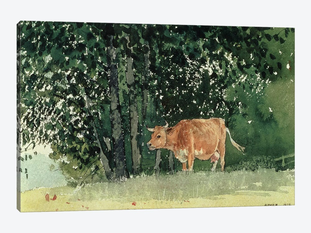 Cow in Pasture, 1878  by Winslow Homer 1-piece Canvas Art Print