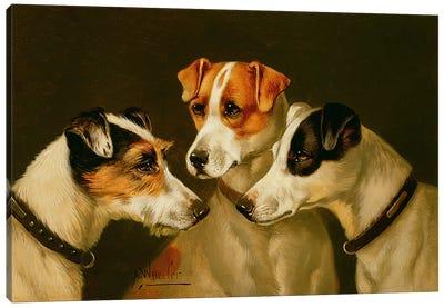 The Hounds Canvas Art Print