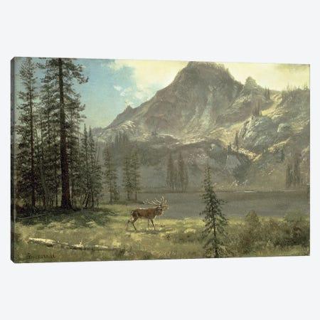 Call of the Wild  Canvas Print #BMN4774} by Albert Bierstadt Art Print