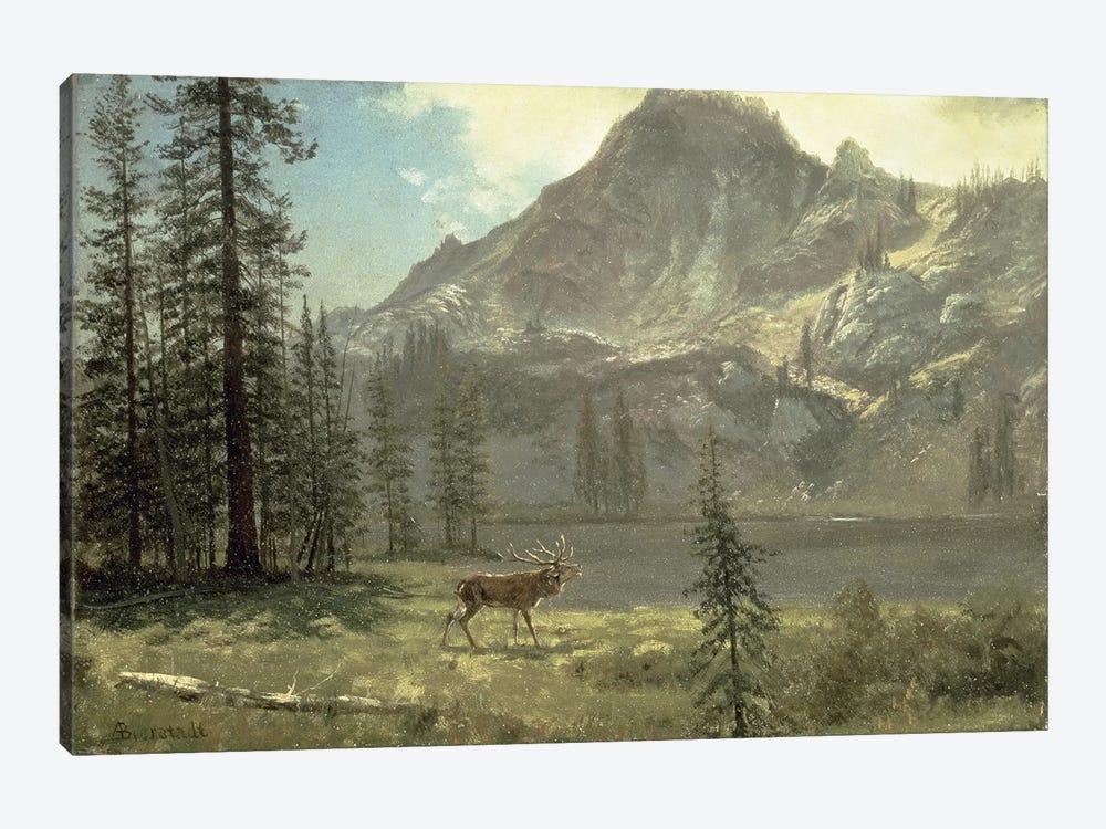 Call of the Wild  by Albert Bierstadt 1-piece Canvas Art Print