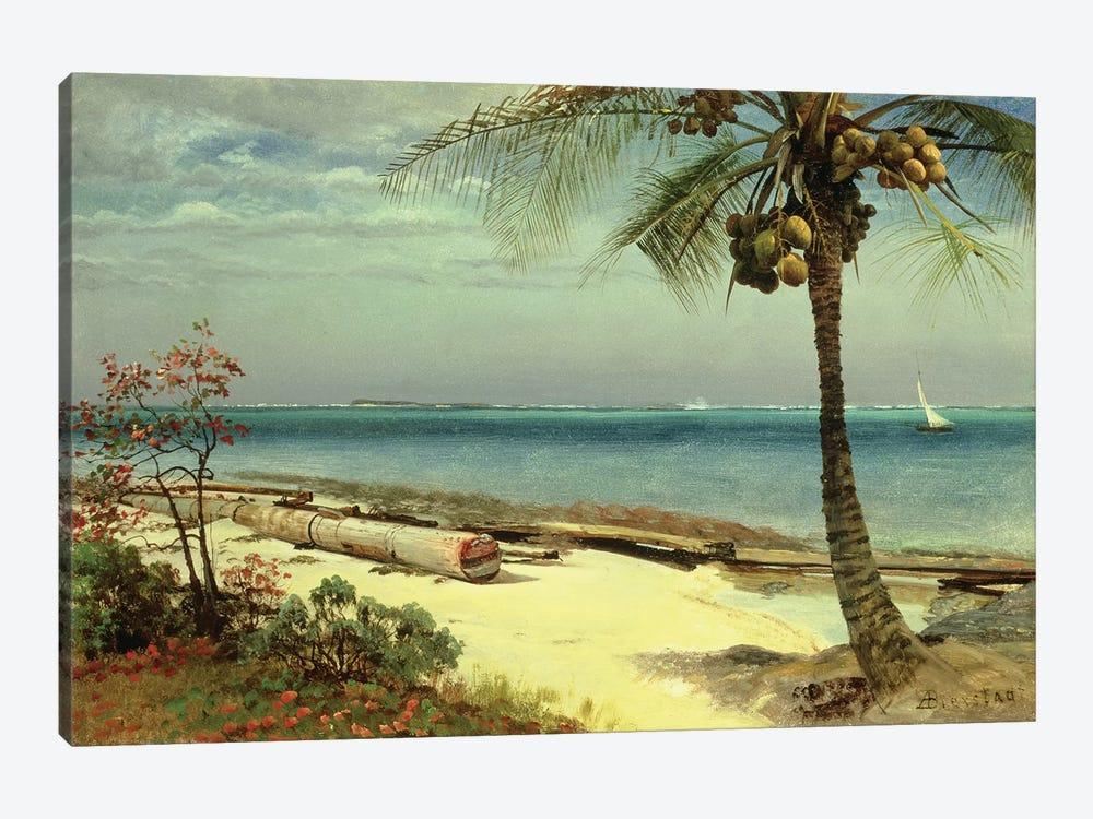 Tropical Coast by Albert Bierstadt 1-piece Art Print