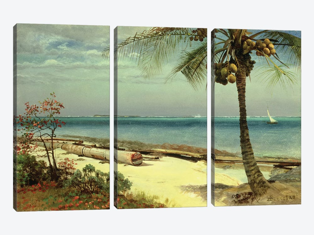 Tropical Coast by Albert Bierstadt 3-piece Canvas Print