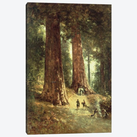 In the Redwoods, 1899  Canvas Print #BMN4787} by Thomas Hill Canvas Artwork