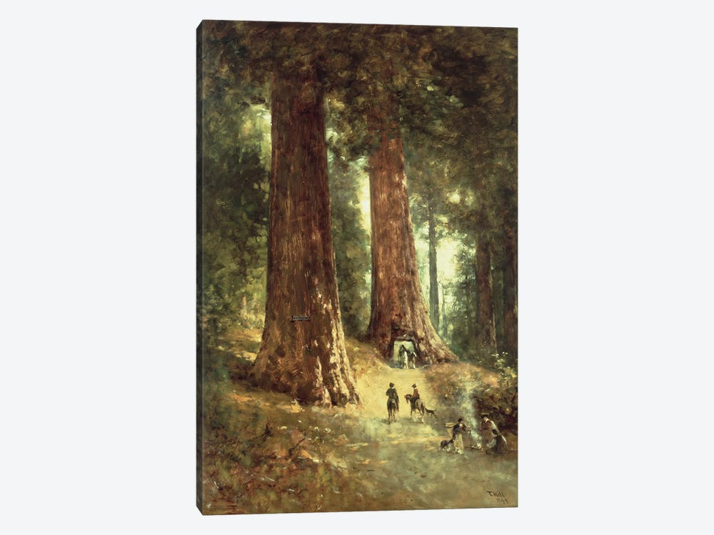 In the Redwoods, 1899  by Thomas Hill 1-piece Canvas Art Print