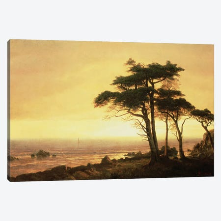 California Coast  Canvas Print #BMN4790} by Albert Bierstadt Canvas Art