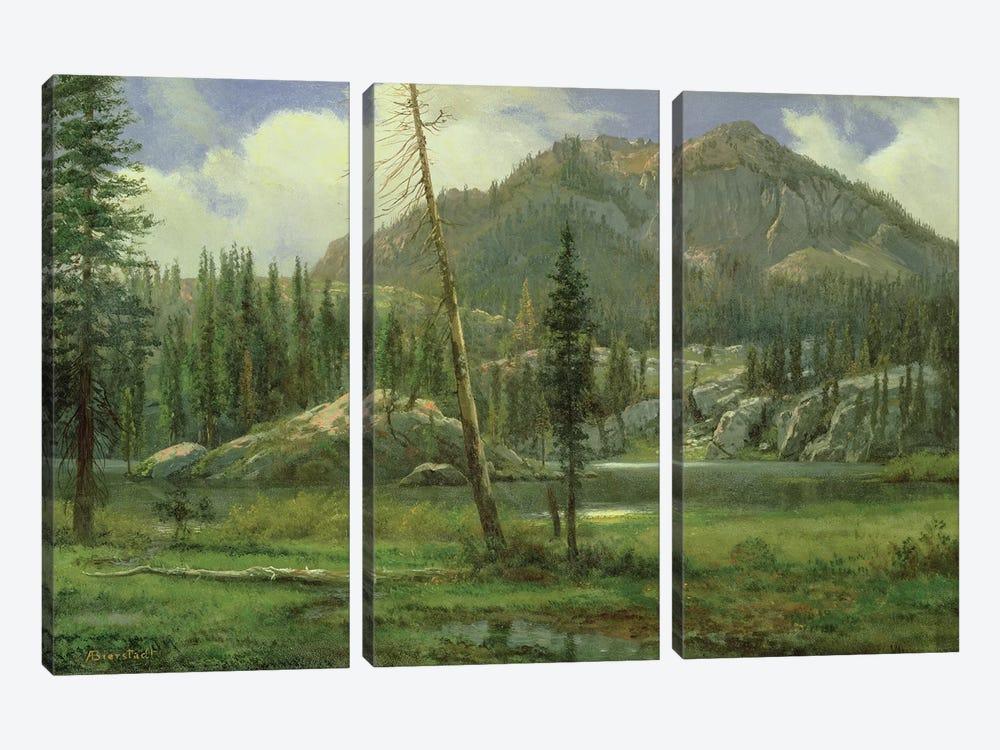 Sierra Nevada Mountains  by Albert Bierstadt 3-piece Canvas Art Print