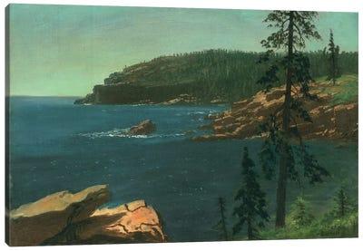 California Coast  Canvas Art Print