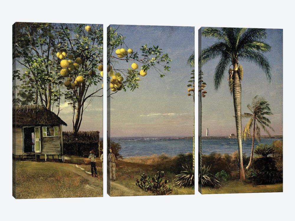 Tropical Scene  by Albert Bierstadt 3-piece Canvas Wall Art