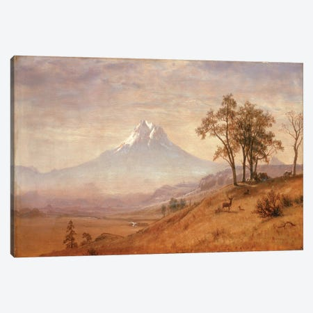 Mount Hood, 1863  Canvas Print #BMN4824} by Albert Bierstadt Art Print