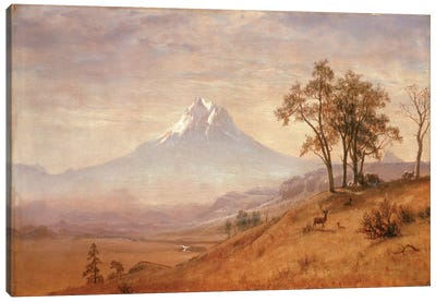 Mount Hood, 1863  Canvas Art Print