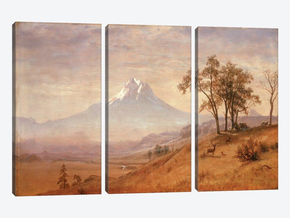 Mount Hood, 1863  by Albert Bierstadt 3-piece Canvas Artwork