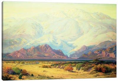 The Majestic Desert  Canvas Art Print