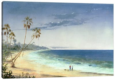 Cuban Landscape, 1866 Canvas Art Print