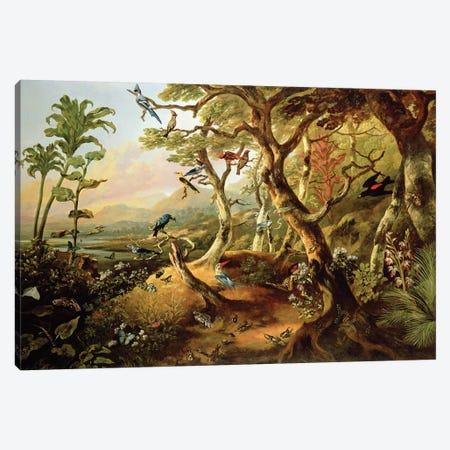 Exotic Birds and Insects Among Trees and Foliage in a Mountainous River Landscape  Canvas Print #BMN4902} by Philip Reinagle Canvas Art Print