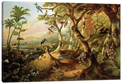 Exotic Birds and Insects Among Trees and Foliage in a Mountainous River Landscape  Canvas Art Print