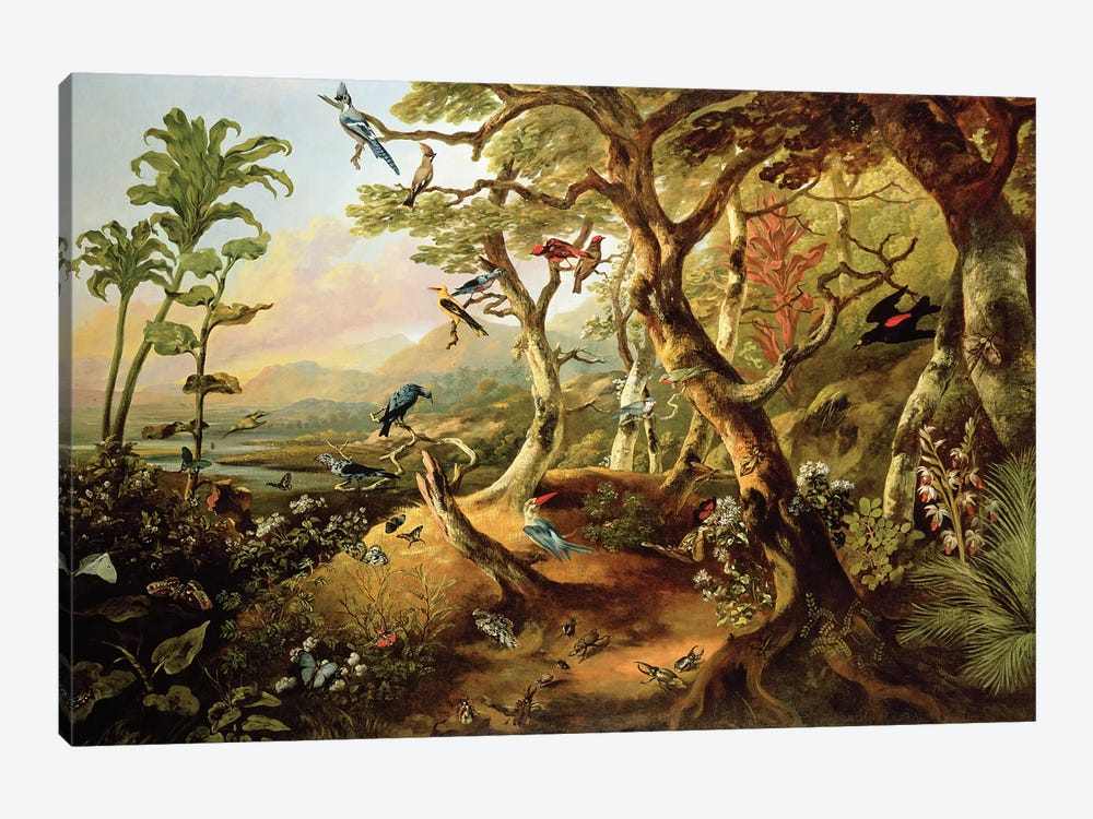Exotic Birds and Insects Among Trees and Foliage in a Mountainous River Landscape  by Philip Reinagle 1-piece Canvas Print