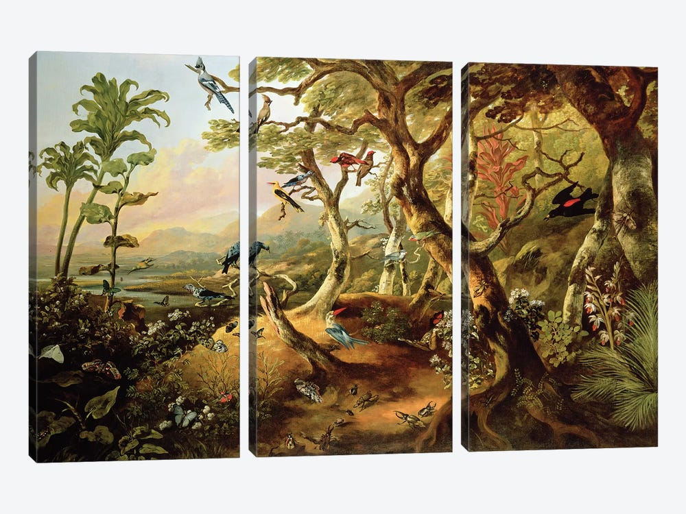 Exotic Birds and Insects Among Trees and Foliage in a Mountainous River Landscape  by Philip Reinagle 3-piece Art Print